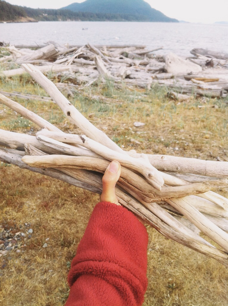 collecting driftwood for an artist friend*