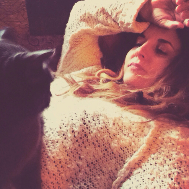 kitty cuddles.jpg