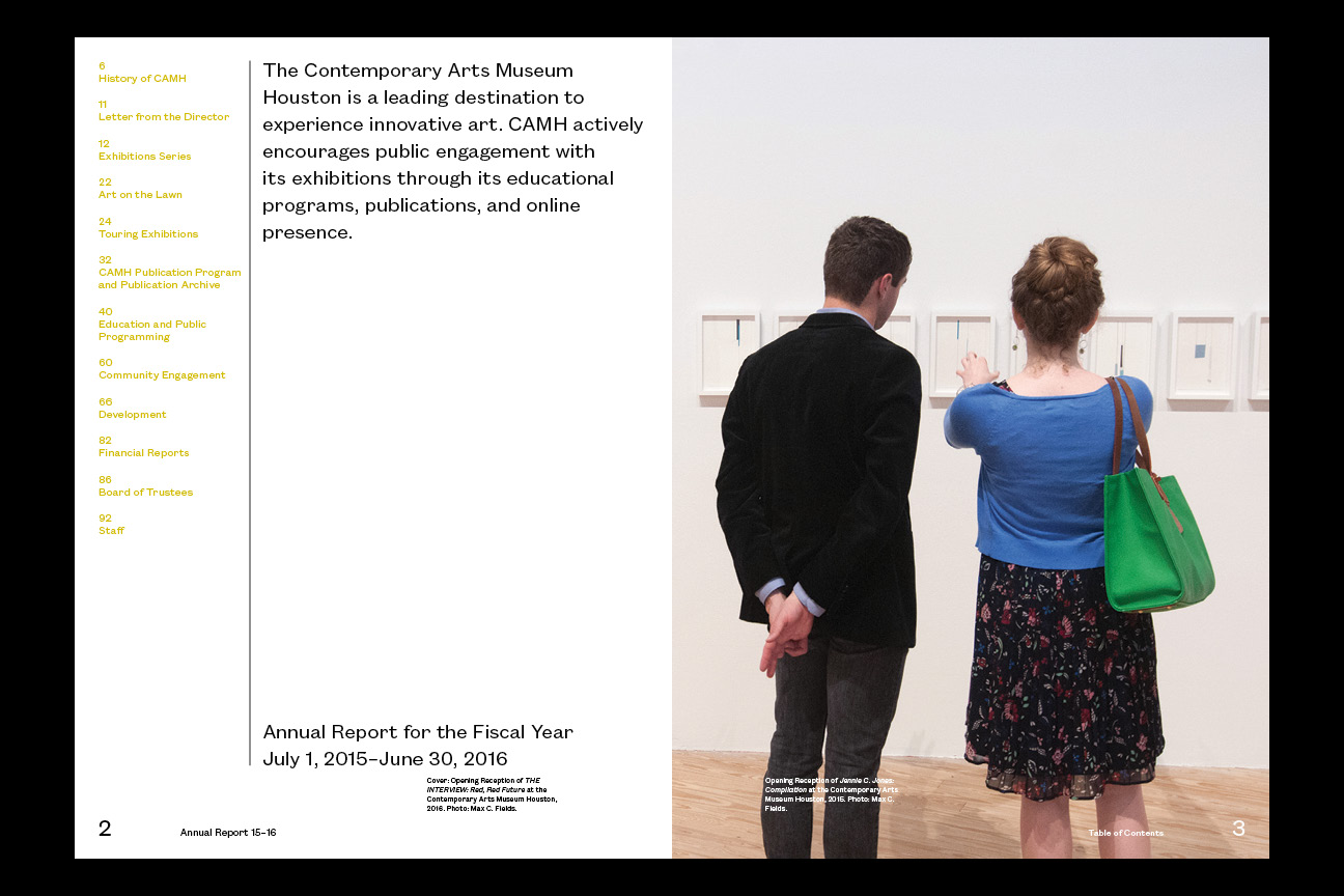 contemporary arts museum annual report vrlaine