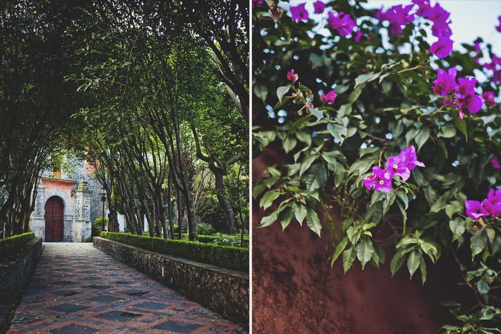 MEXICO14.jpg
