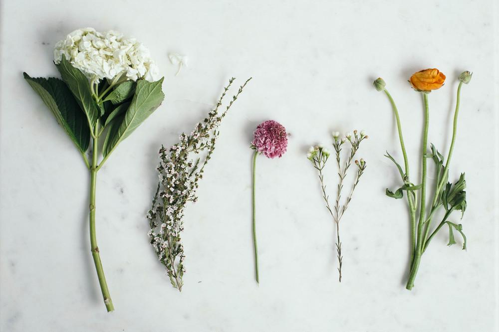 simplicite-6.jpg