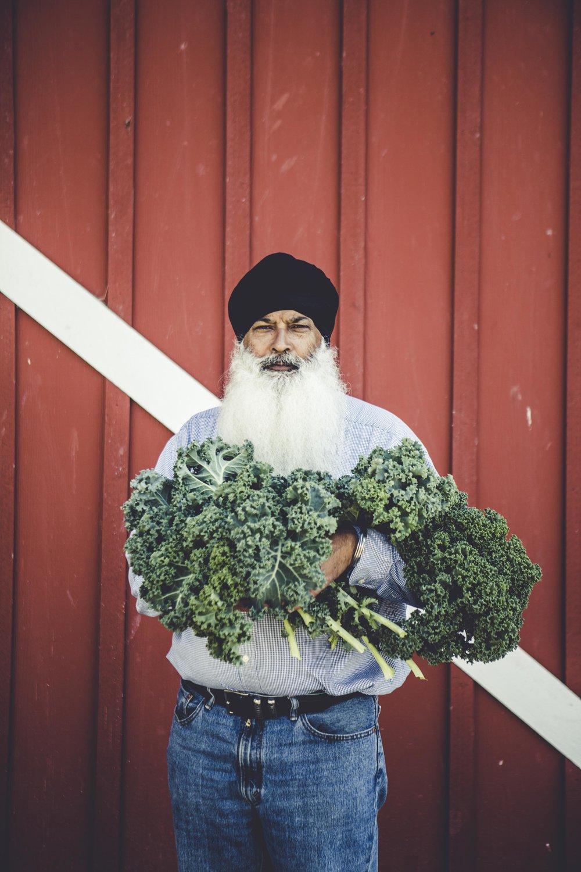 herbs-59.jpg