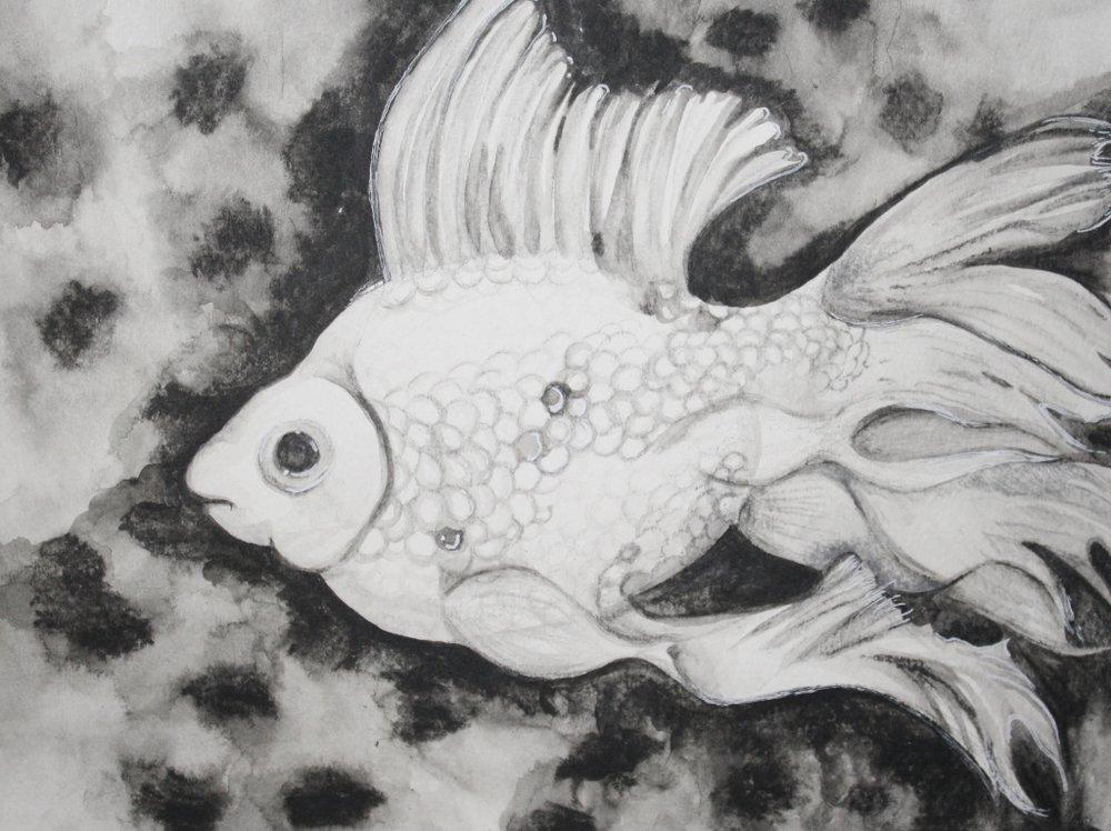 04 Gold Fish.jpg