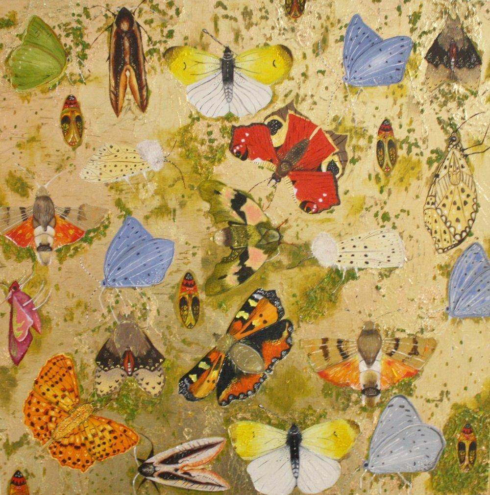 Nymphalidae