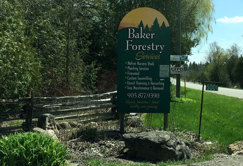 Baker Forestry.jpg