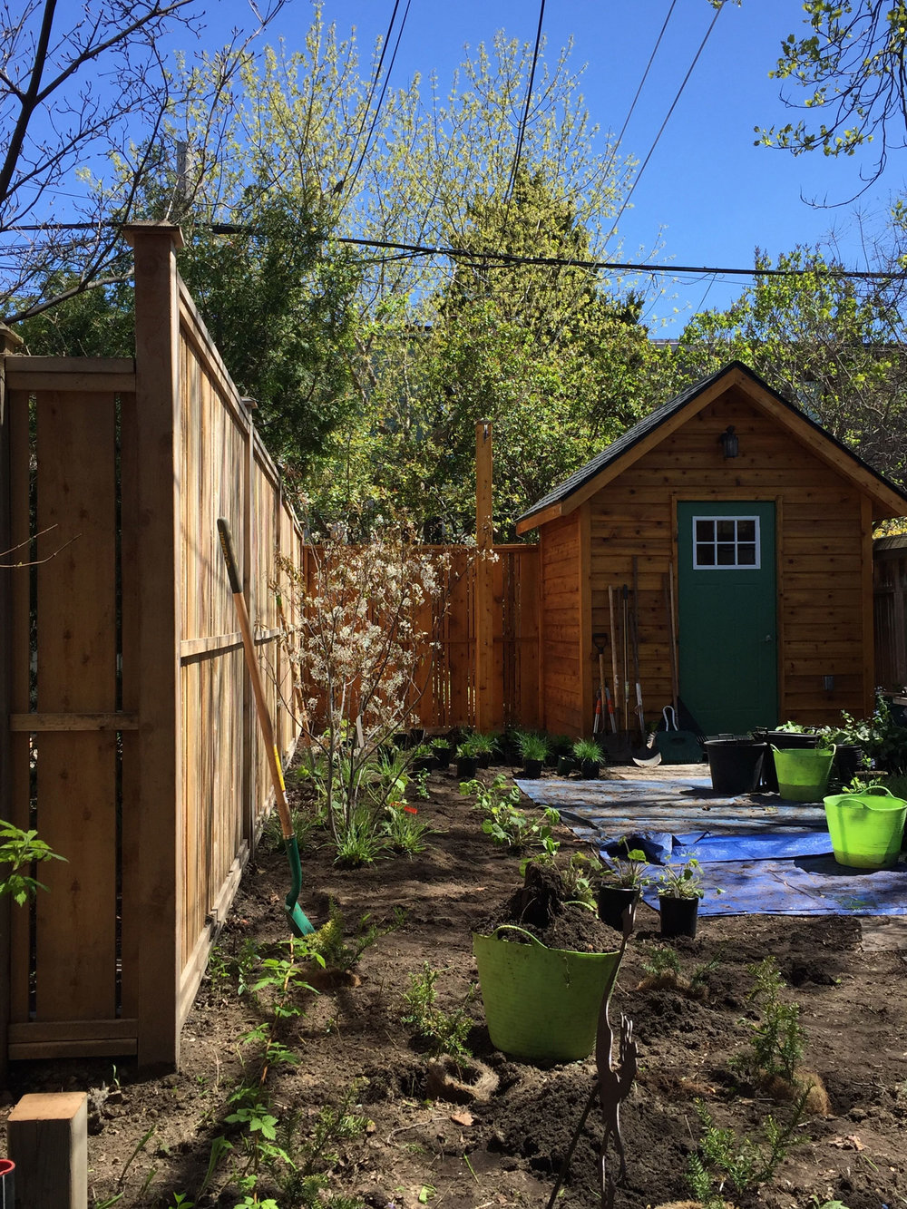 Garden installation.jpg
