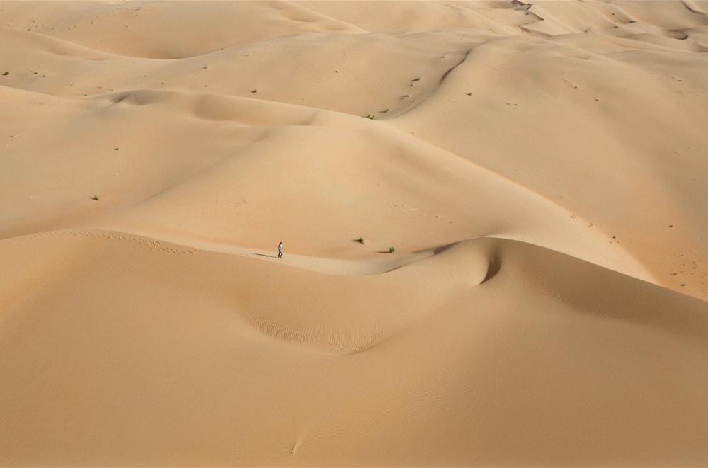 rl+scouting+liwa+desert-min.jpg