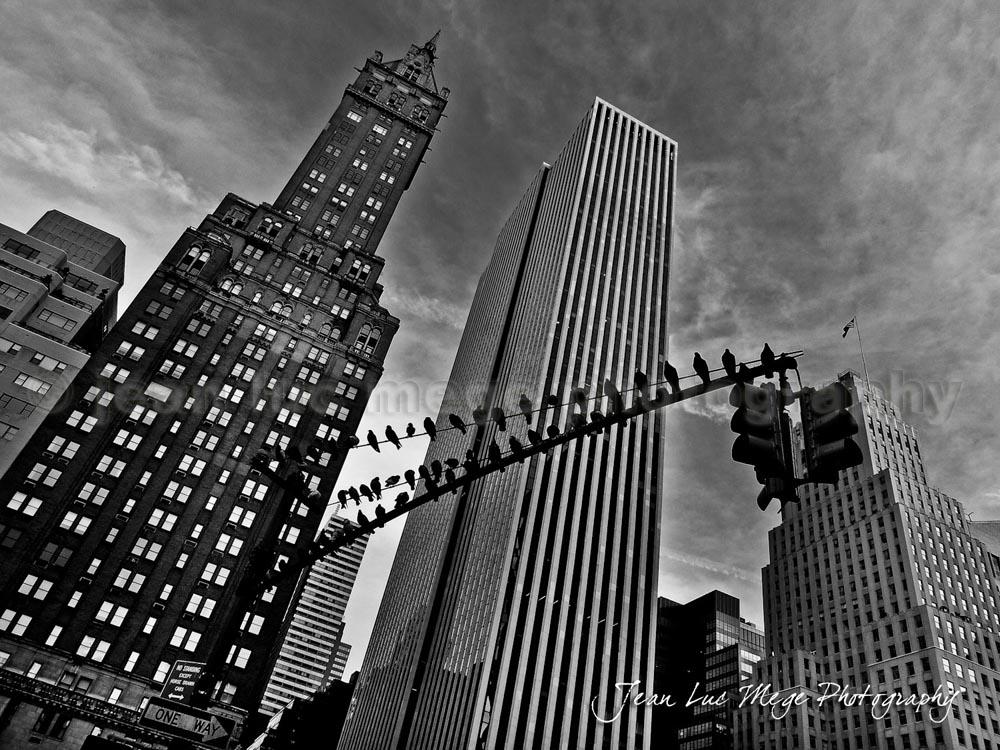 Architecture-jluc-mege001.jpg
