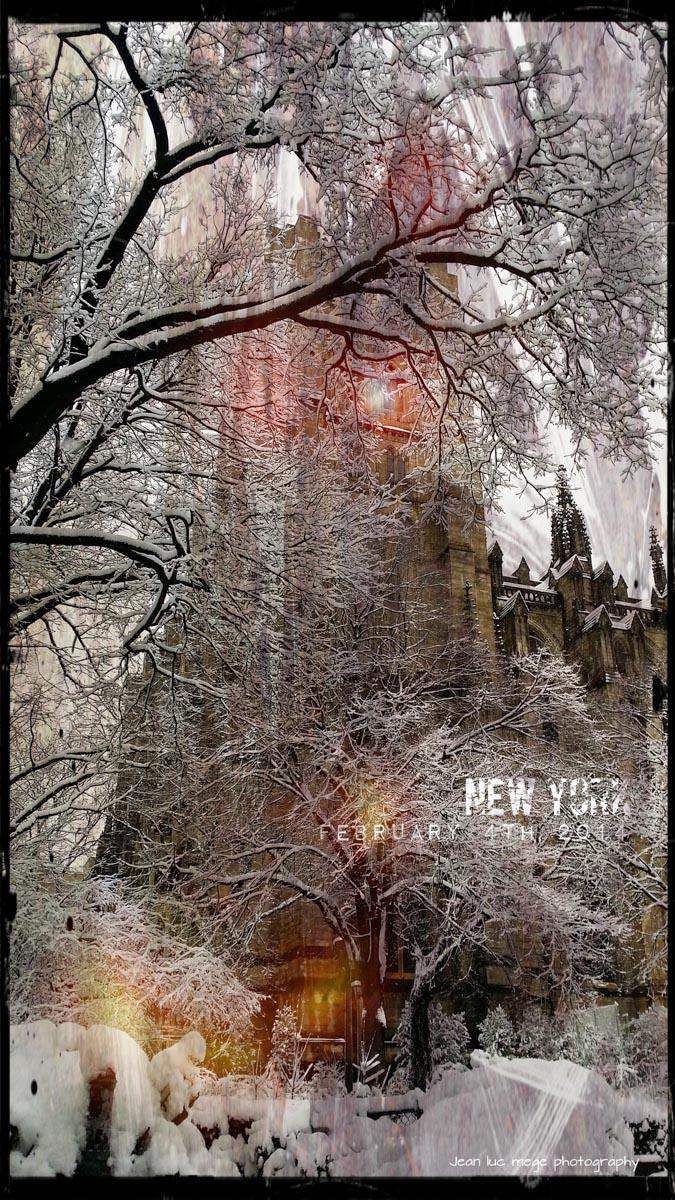 NewYork photo--7.jpg