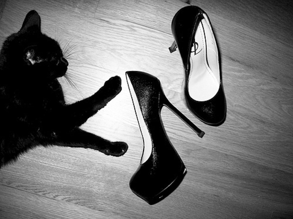 black-cats-cute-fashion-heels-ysl-Favim.com-66322.jpg