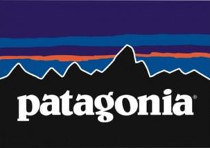 patagonia-logo_2.jpg
