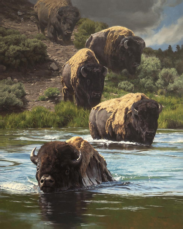 Buffalo XING
