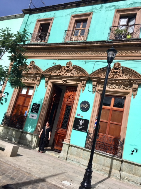 Oh how the colors of old buildings in Oaxaca shine and make you happy!