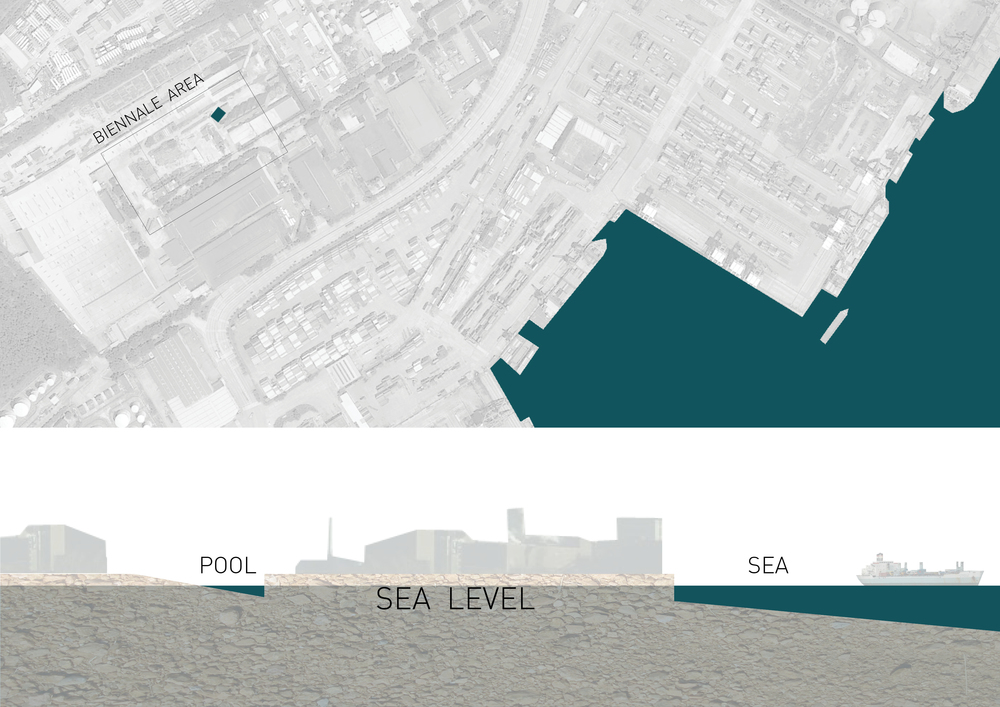 SEA  LEVEL7.jpg