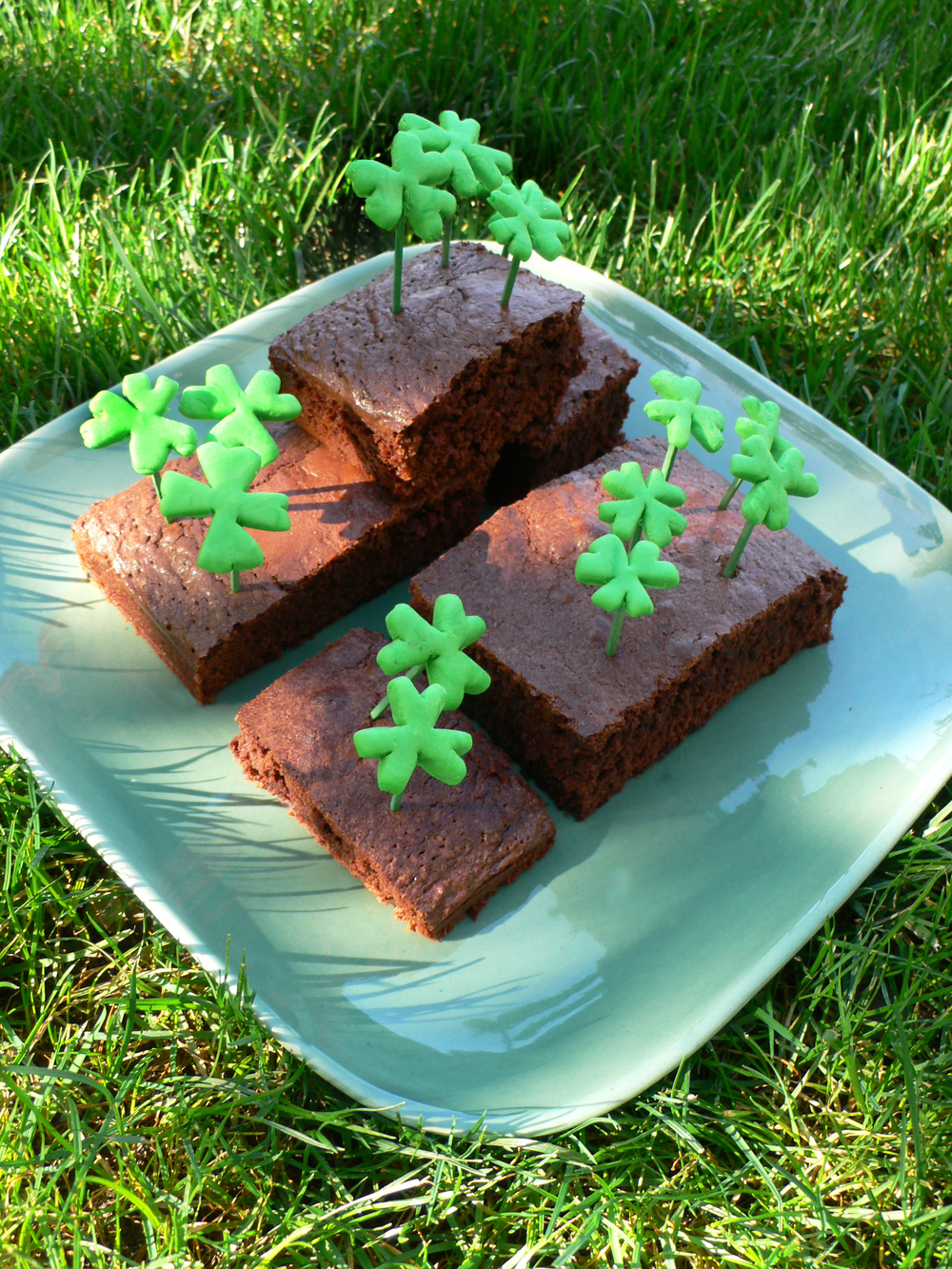 Lucky Brownies!