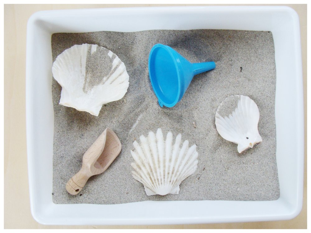 Vassoio della sabbia.JPG