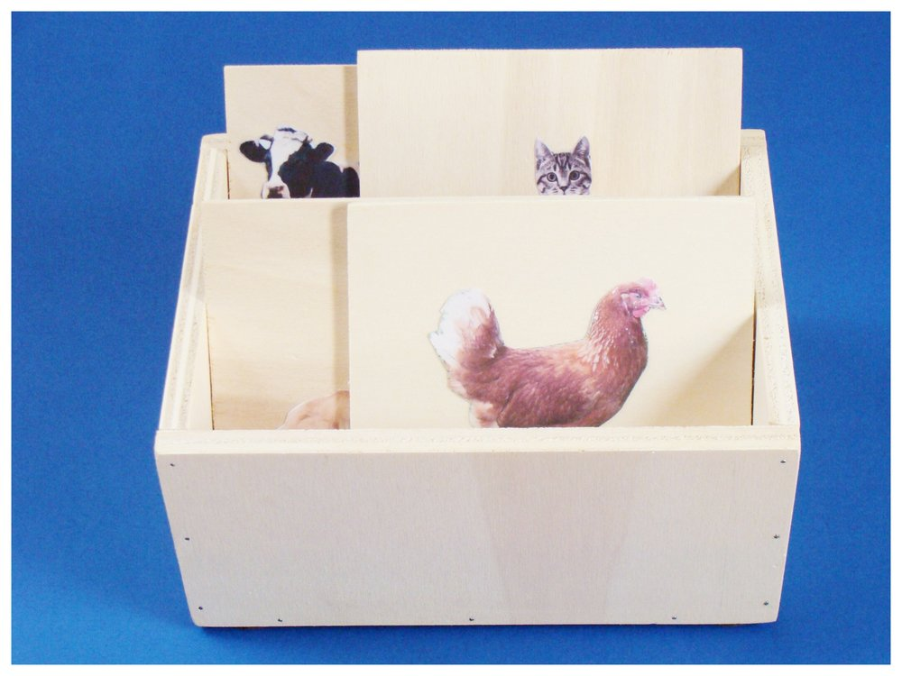 3 Scatola a scomparti in legno per Nomenclature animali Montessoriana.JPG