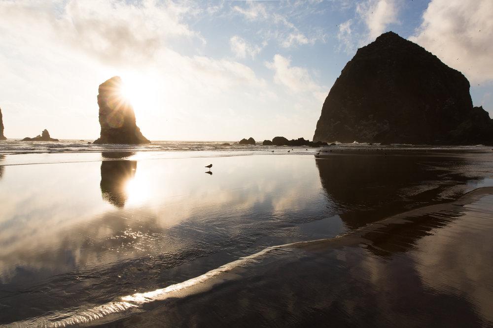 Amy Sinclair_Canon Beach-1.jpg