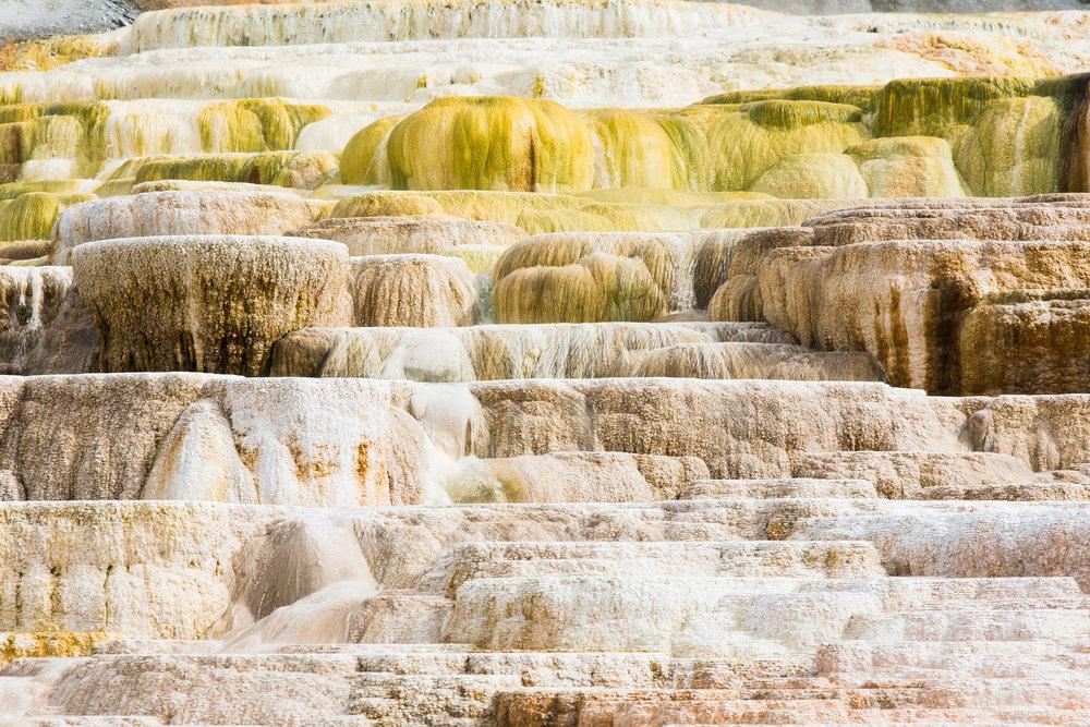 Amy Sinclair_Yellowstone 2-1.jpg