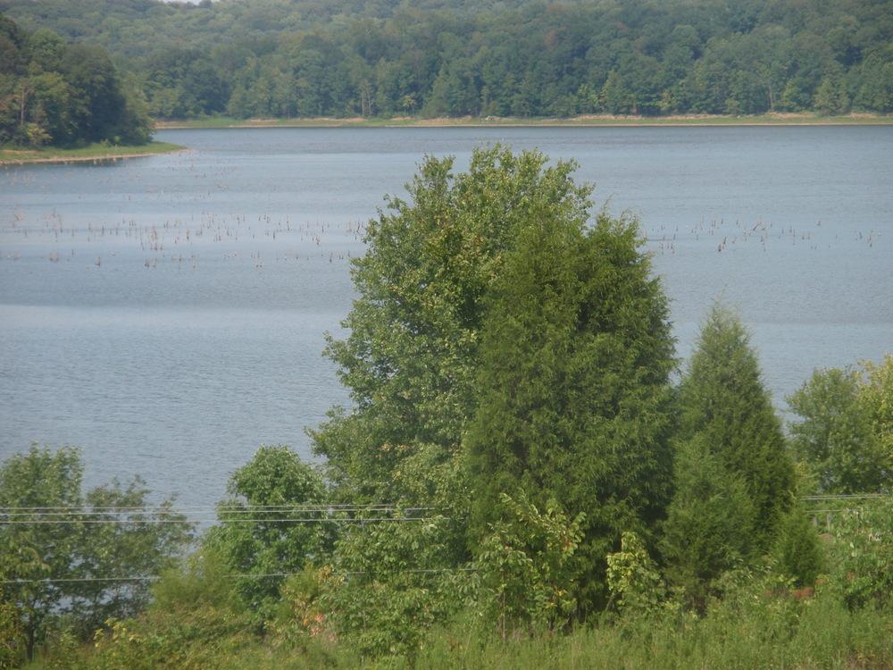 LICK FORK : Patoka Lake Fishing Reports