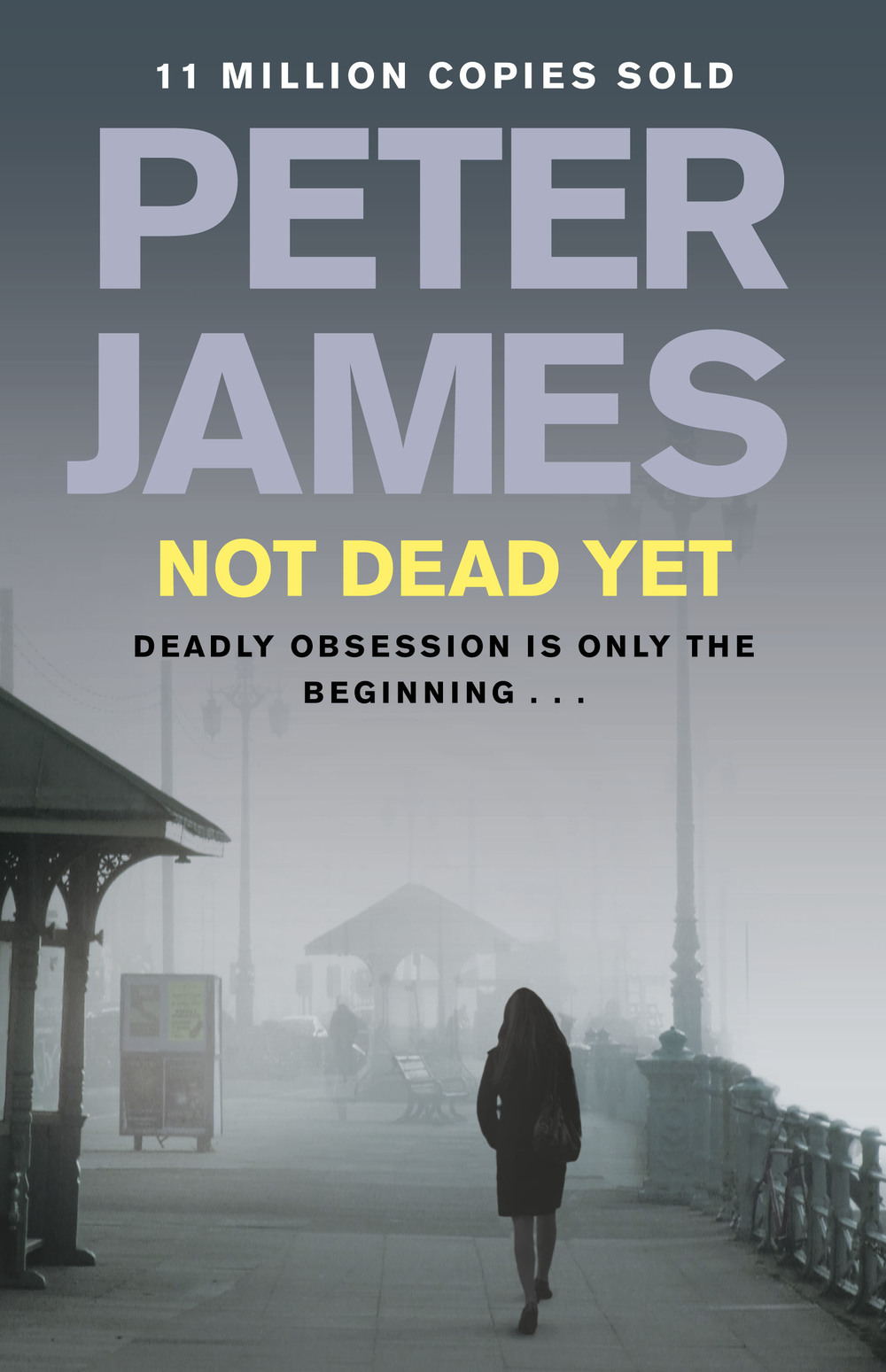 NOT DEAD YET Macmillan Hdbk cover.jpg