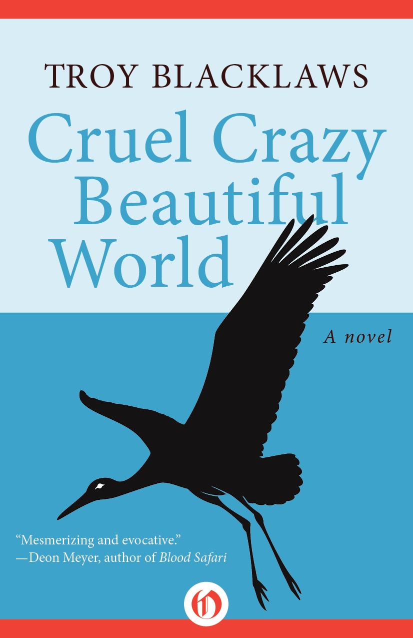 CRUEL CRAZY BEAUTIFUL WORLD Literary fiction, 214 pages Open Road Integrated Media - August 2012 South Africa, 2004. Jerusalem (half Muslim, half Jew) is a young student with poetic leanings. Jabulani loses his teaching job for making a satirical remark about Mugabe and flees his native Zimbabwe. As two men's lives merge, their stories reveal the paradoxes of the South African experience.