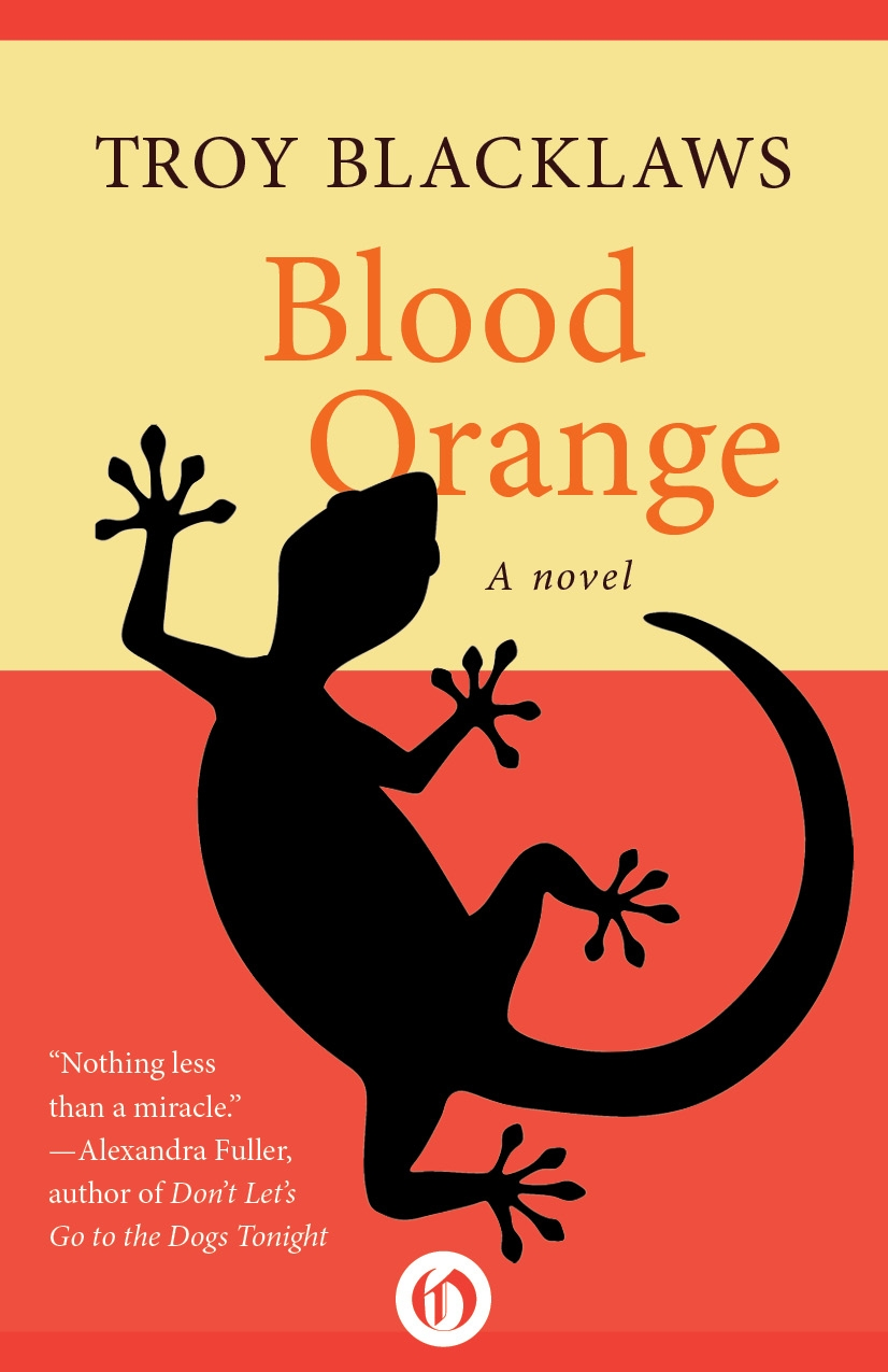 BLOOD ORANGE Literary fiction, 205 pages Open Road Integrated Media - August 2005 'Tantalizingly beautiful.' -- Bishop Desmond Tutu This stirring account of the coming of age of a South African schoolboy is a bitter-sweet evocation of a land both cruel and fruitful. Also adapted as a play.