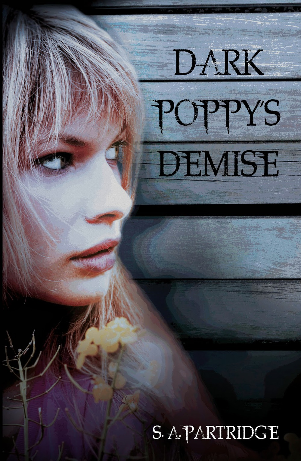 DARK POPPY'S DEMISE  Young Adult novel, 192 pages Human & Rousseau (SA), 15 July 2011  Jenna feels as though she lives her real life online, when she is enigmatic, creative Dark Poppy. When Robert Rose sends her a friend request, she sees no reason to refuse...