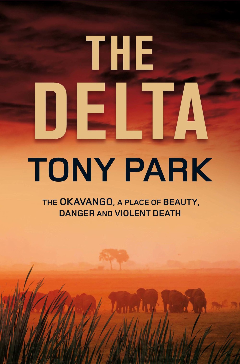 THE DELTA UK final front cover.jpg