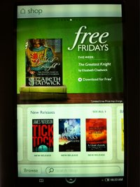 the_greatest_knight_b_n_free_fridays_promotion,_feb_2011.jpg