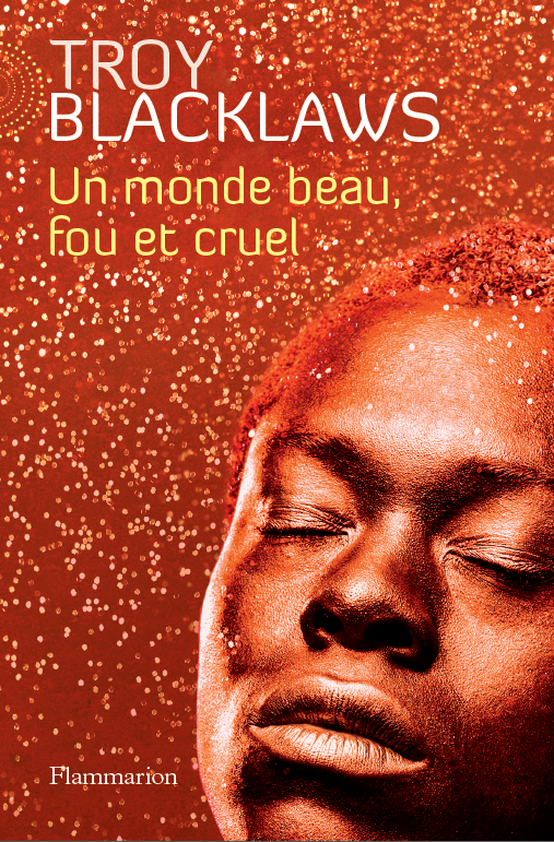 CRUEL CRAZY BEAUTIFUL WORLD - France, Flammarion front.png
