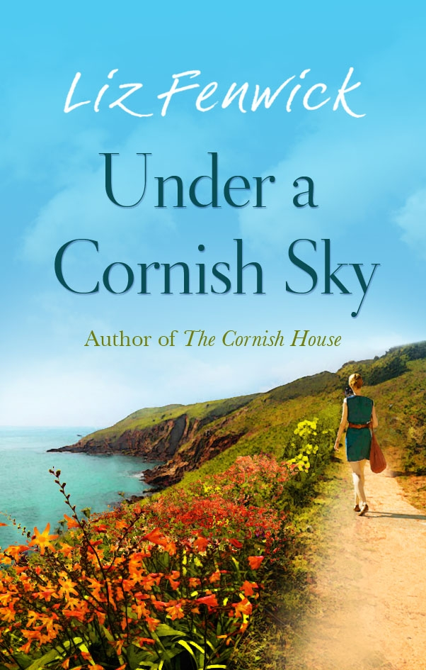 UNDER A CORNISH SKY Contemporary Romance, 328pp. Orion - May, 2015 Another deliciously irresistible tale set in the heart of her beloved Cornwall. Demi receives a surprising, puzzling inheritance: half of the beautiful Boscawen Estate. The conflicts that ensue and discoveries made, change her life forever.