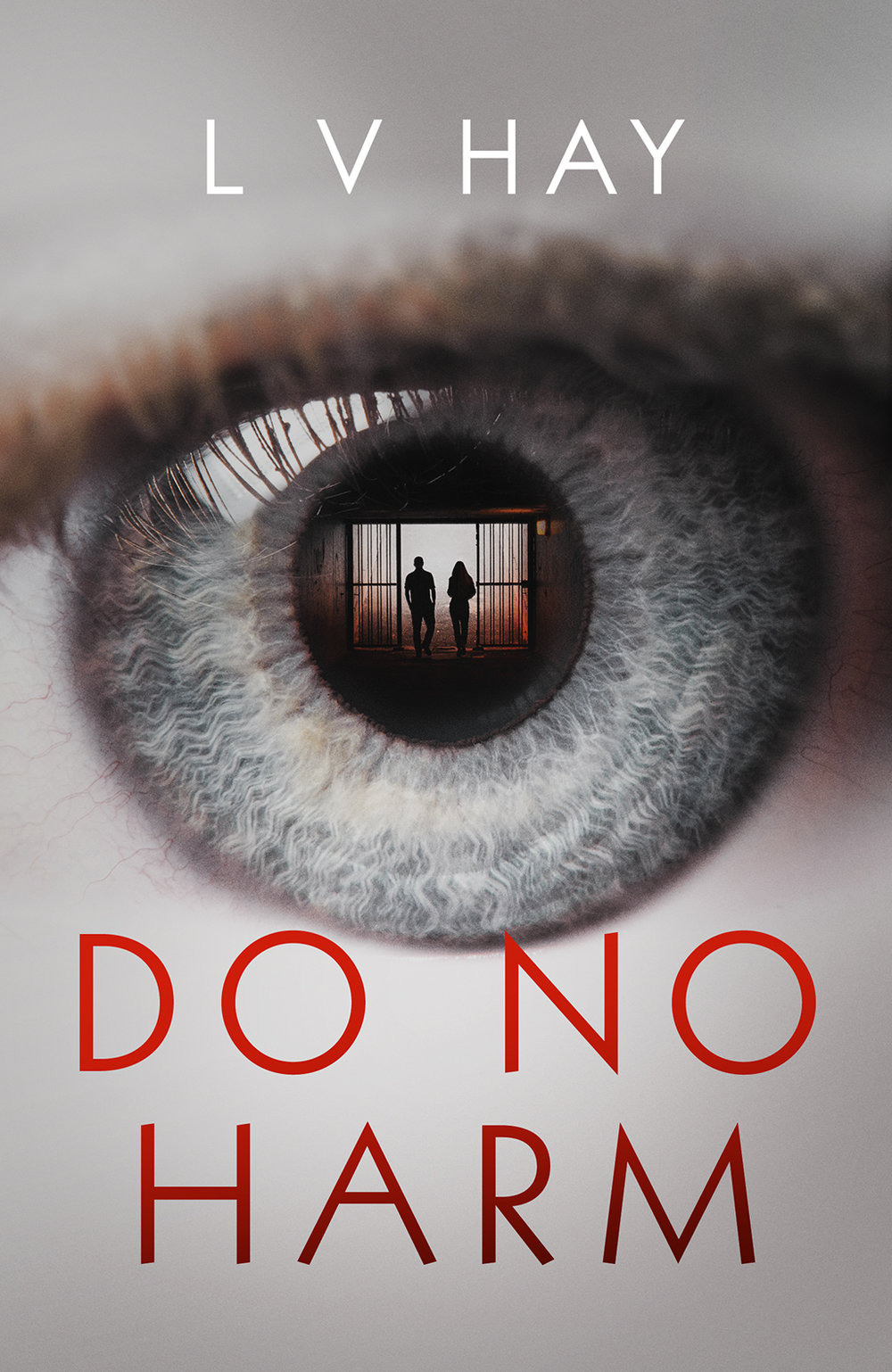 DO NO HARM  Thriller, 300 pages Orenda, July 2018   FATAL ATTRACTION for the modern age. Divorced father Maxwell will stop at nothing to see the return of his ex-wife Lily and 12-year-old Denny, when Lily remarries, even if it means murder…