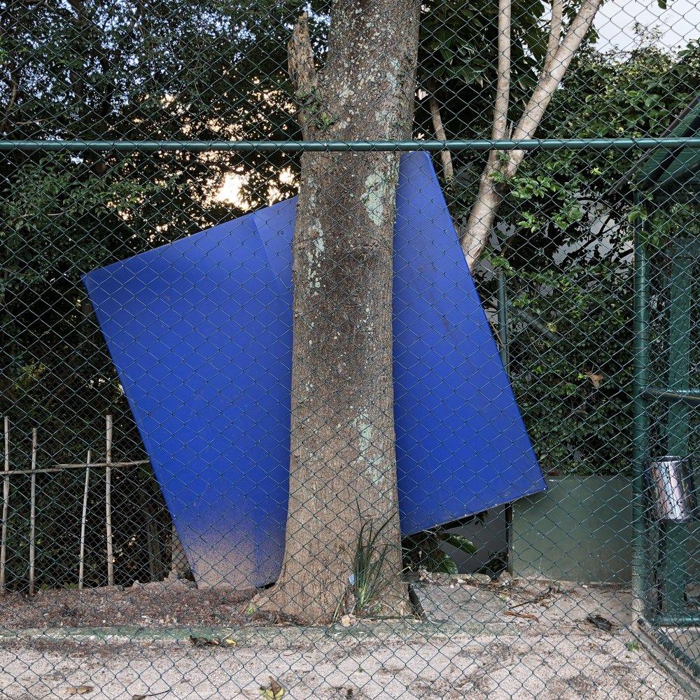 Novíssima série experimental de telas atrás de árvores. Nestes monolitos cromáticos a natureza emoldura a obra e não o contrário. Também o limiar entre pintura e escultura equilibra-se finamente no quadro.
