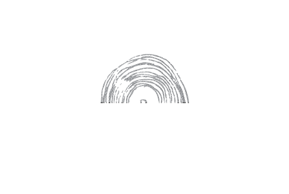 The Spark Mill - handcrafted consulting