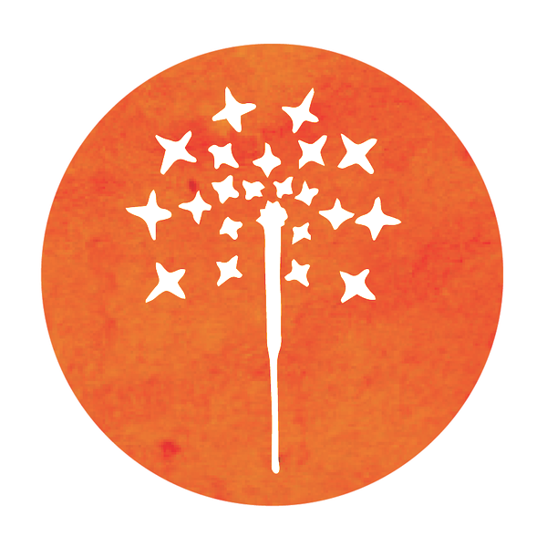 Spark Studio Icon.png