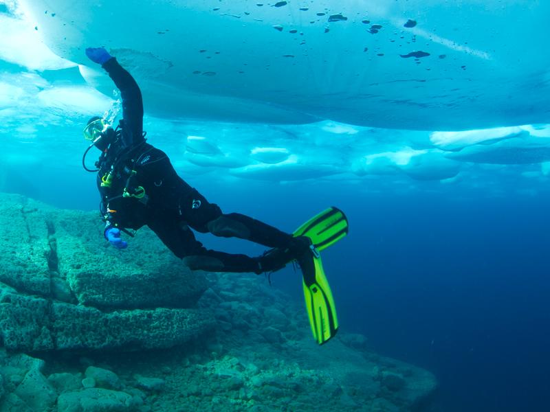 David Gibbins ice 2011 1.jpg