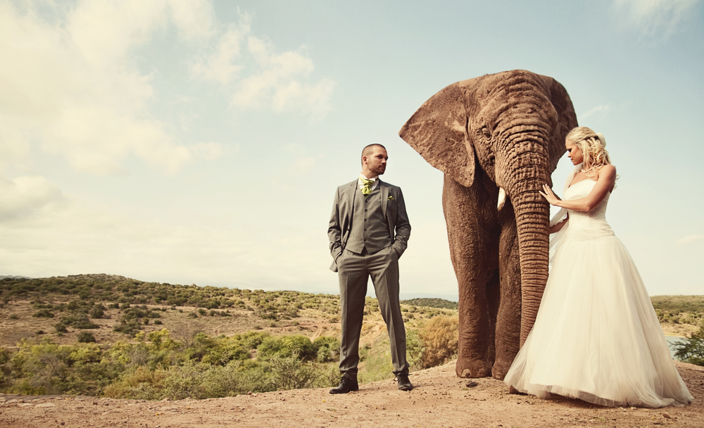FEATURED WEDDING: South Africa