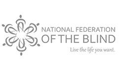 National Federation of the Blind Resolution on Online Ballot Marking Systems