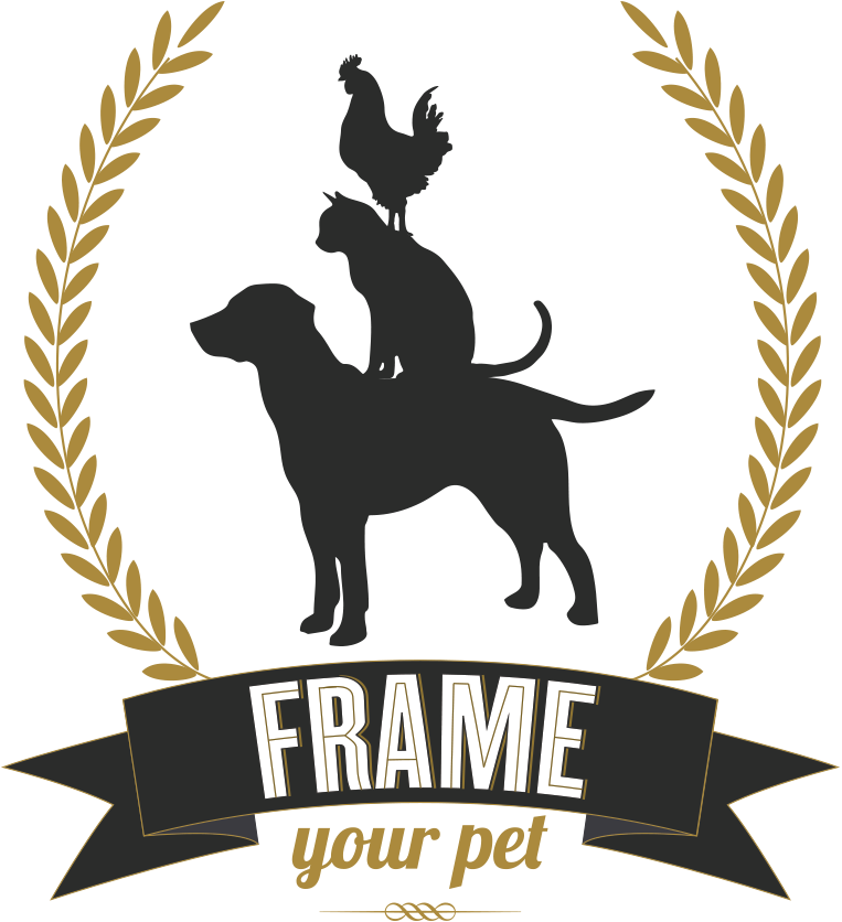 frame your pet los angeles pet photographer - Dog Frame