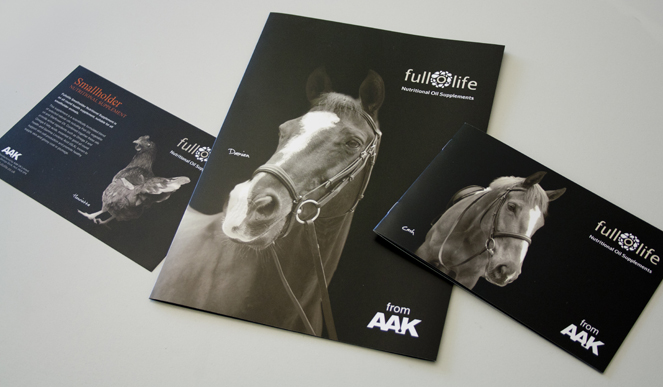 This is a good example of elegant equine photography used in brochures. Thanks to FullofLife for the photo to illustrate this topic.