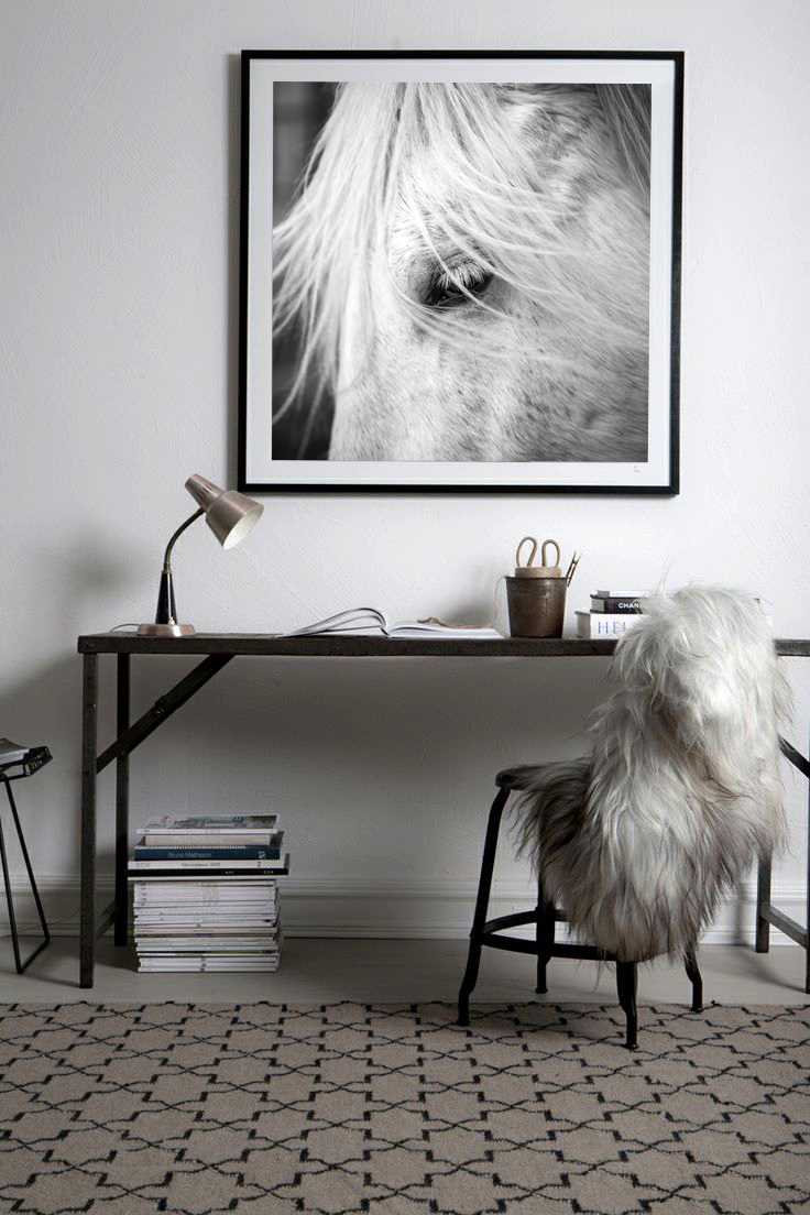 Horse-photo-framed-in-wall.jpg