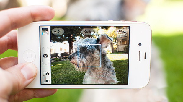 How many photos of your dog or cat do you have in your smart phone?