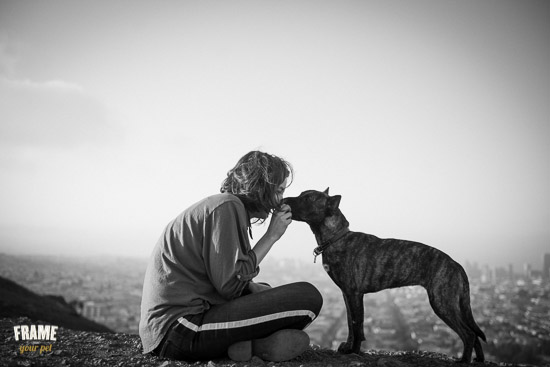 bond-between-dog-and-owner-01.jpg