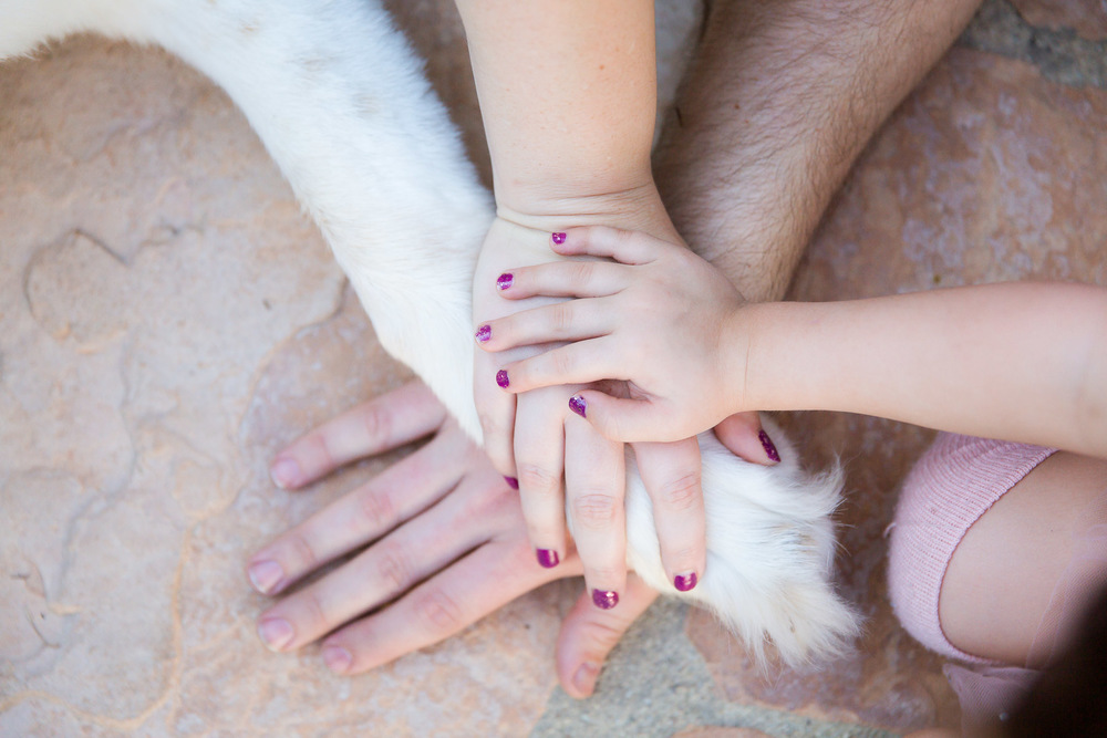 family-portrait-photographer-with-pets.jpg