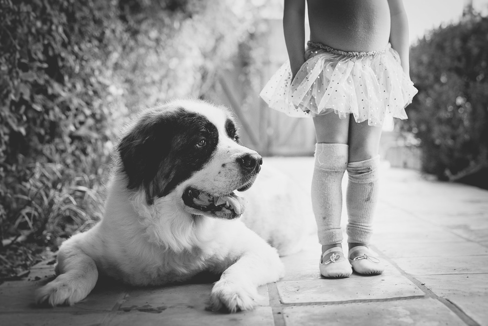 black-white-photo-kid-and-dog-fine-art.jpg