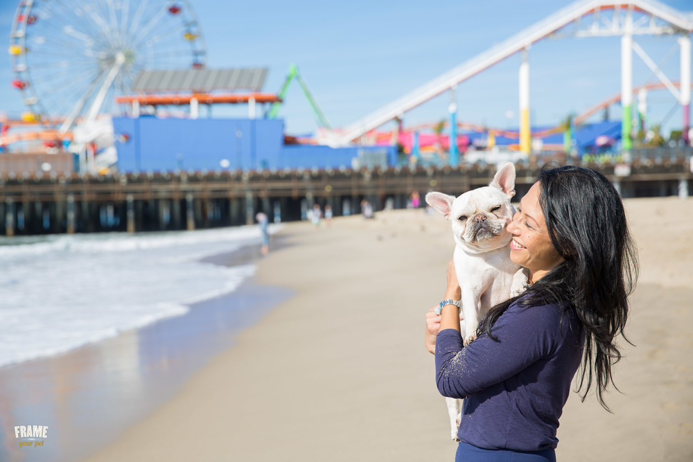 santa-monica-pier-dog-photo-sessions