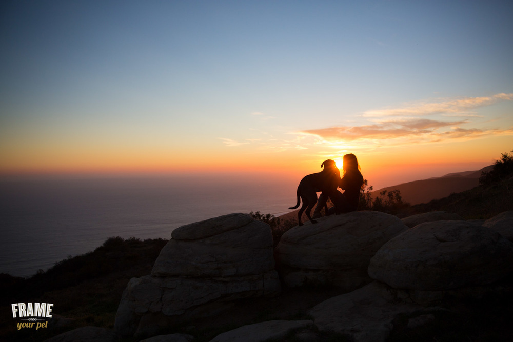 dog-and-woman-watch-sunset.jpg