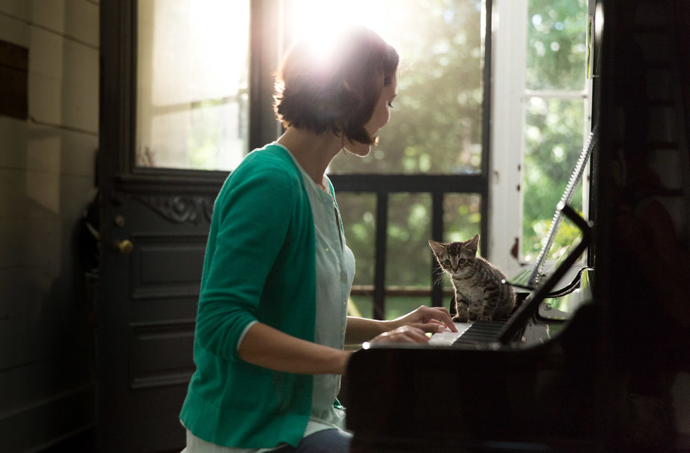 woman-playing-piano-kitty-cat-on-keyboard-pet-photography.jpg