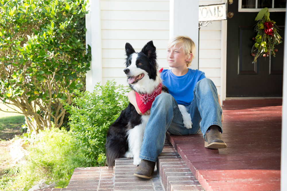 dog-pet-photographer-collie-and-boy-porch-outdoors.jpg
